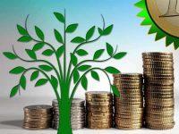 Economic Development vs the Environment