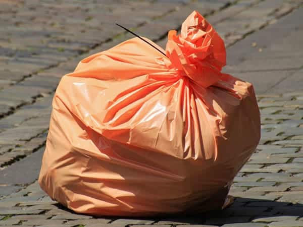 short essay on plastic bags should be banned