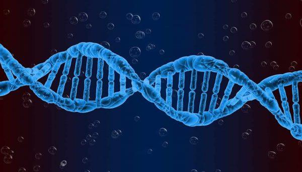 Genetic Engineering in Humans is Bad
